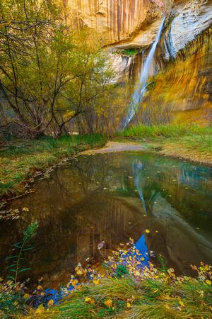 Pool at Calf Creek Falls