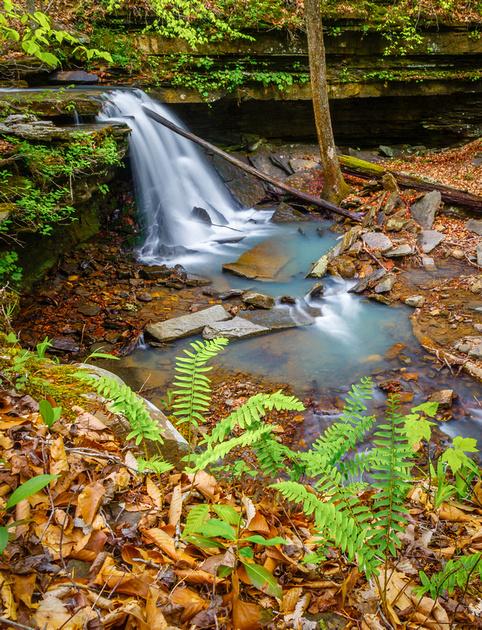 Briar Creek Falls