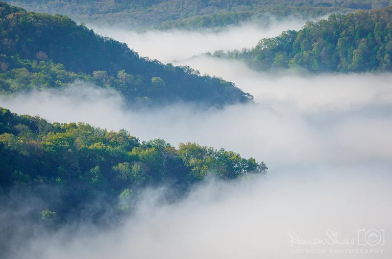 Upper Buffalo Fog