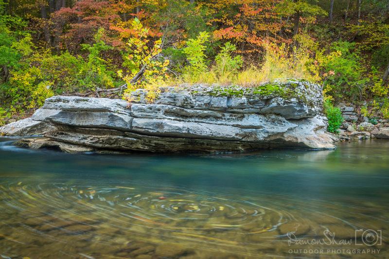 Grey Rock Leaf Swirl on the Buffalo