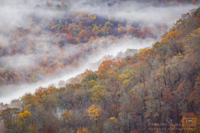 Cloudland Fog 244mm