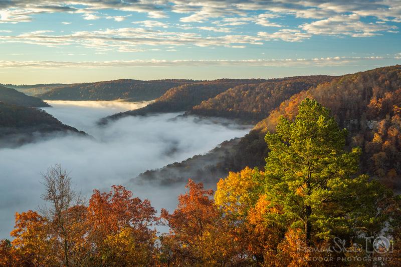 Cloudland Fog in November